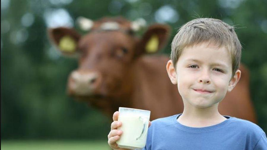 La leche puede mejorar tu salud cardiaca y prevenir infartos